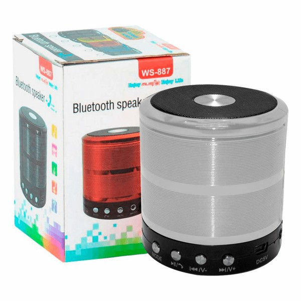 Mini Caixa De Som Bluetooth 5w Ws887 - Prata
